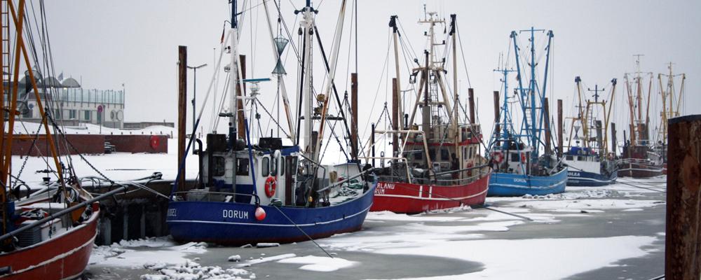 kutterhafen-winter.jpg